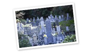 お墓の写真をお撮りください。