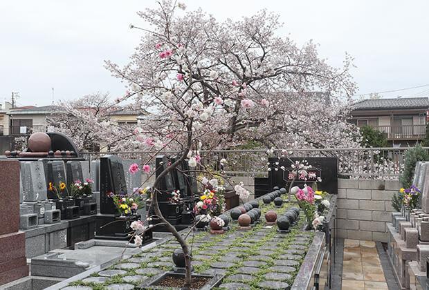 サニープレイス福壽園(北区)